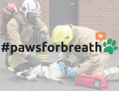 Press Release: Smokey Paws launch £90k fundraising campaign to equip every UK fire service with life-saving pet oxygen masks